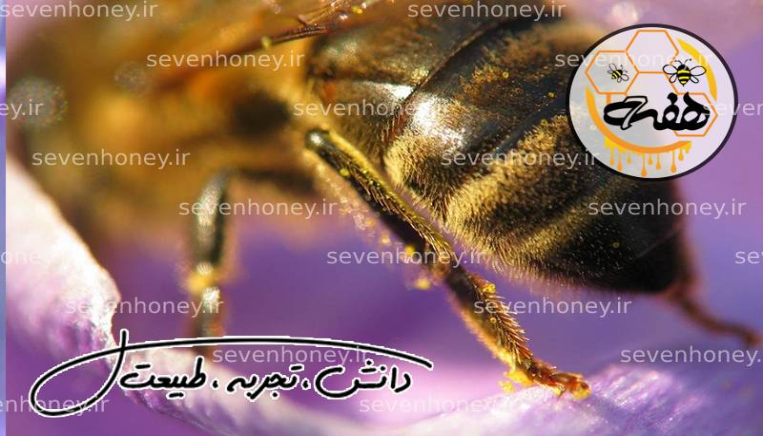 خرید عسل تضمینی